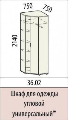Шкаф для одежды угловой универсальный 36.02 Триумф-1