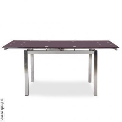 Стол обеденный S17 Purple/хром(без цветка)-1
