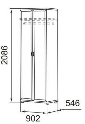 Шкаф для одежды 2-х дверный 21Р Ника-Люкс