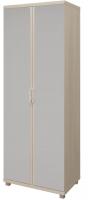 Шкаф для одежды 2-х дверный с зеркалом 10 Ирис