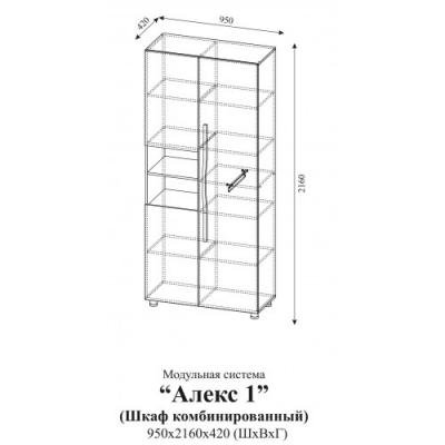 Шкаф комбинированный Алекс 1 (Клен/Титан)