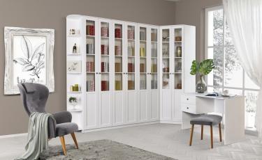 Модульная библиотека «Луиза»